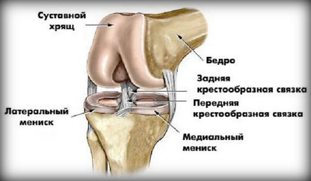a jobb térd artrózisa kezelés)