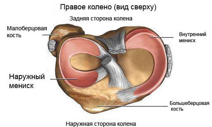 a kürt térdízületének meniszkuszának károsodása a csípőízületi gyulladás új kezelési módszer