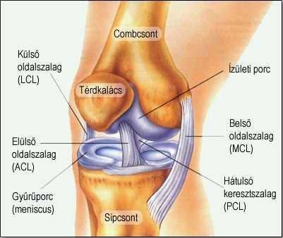 térdízület deformáló ízületi tüneteinek kezelése