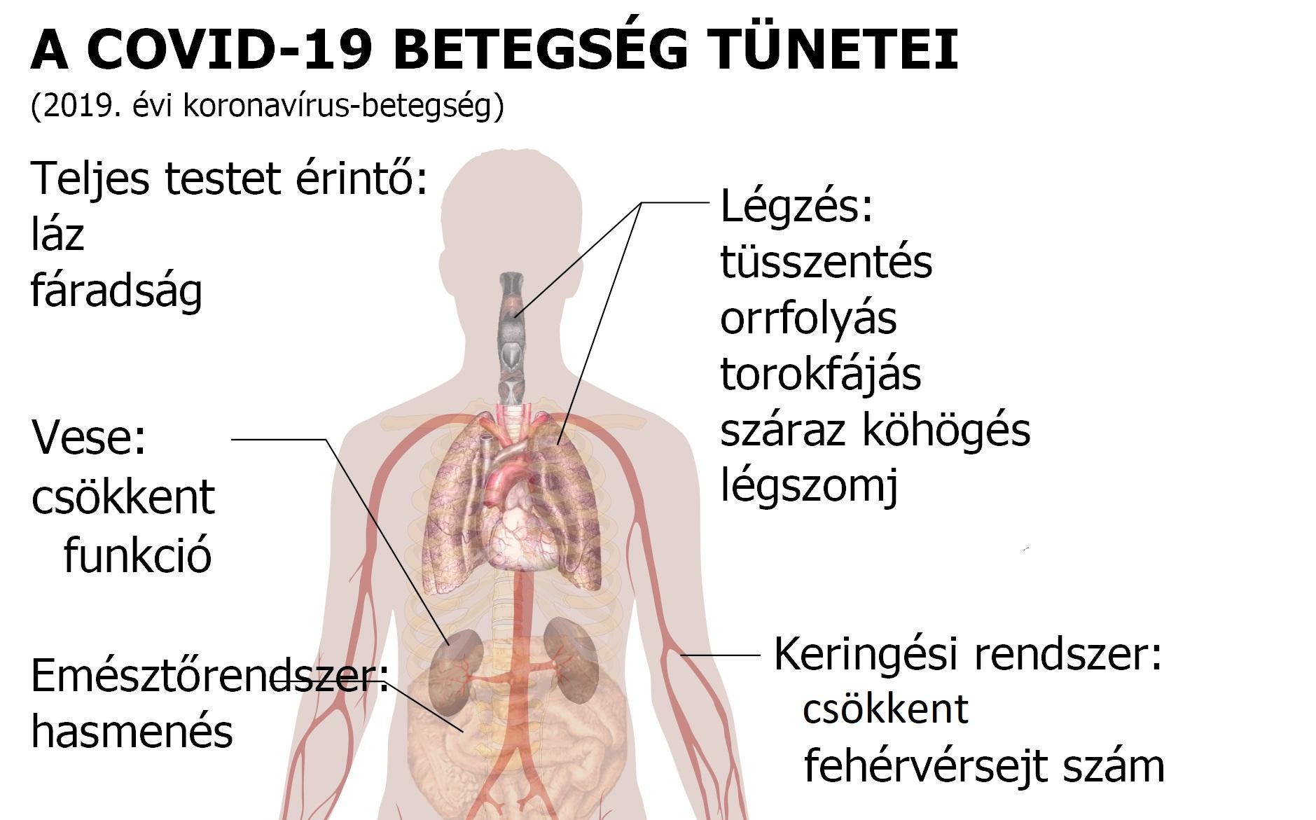 kötőszövet és emberi betegségek)