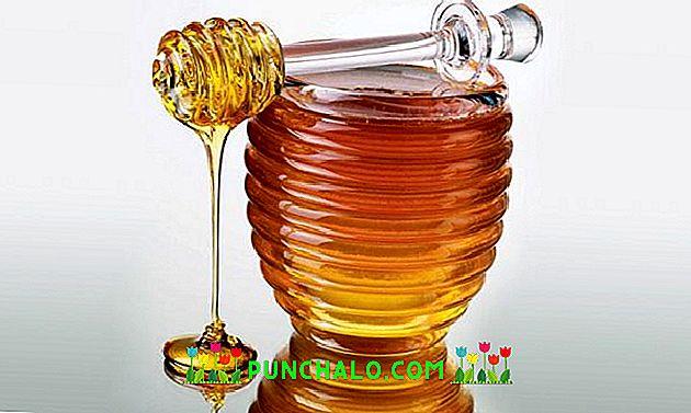 méh termékek térd kezelése
