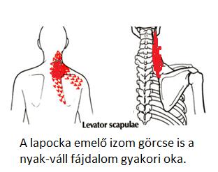 gyógyszerek a nyaki gerinc csontritkulásának kezelésére