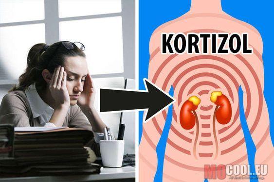 hogyan befolyásolja a hormon az ízületeket)