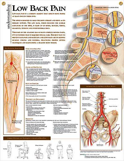 Az ankkylotizáló spondylitis (Bechterew-kór) és a mágnesterápia