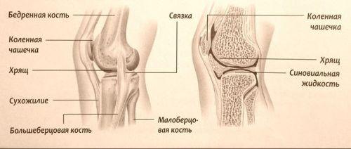 fájdalom a térd hemarthrosisával)