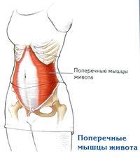 térdízület artrózisa 3 fokos előrejelzés