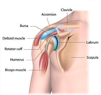 artrózisos vizsgálat ízületi fájdalmak húzza az inak