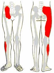 csípőízületek ízületi gyulladás tünetei)