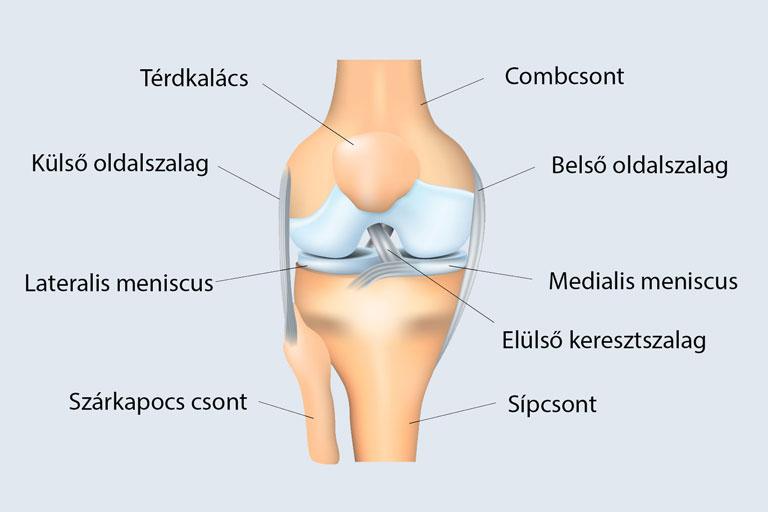 fájdalom műtét után a térd meniszkuszán)