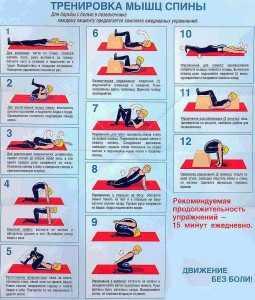 készítmények a nyaki gerinc nyaki osteochondrosisához)