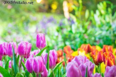 ízületek visszatérnek tavasszal