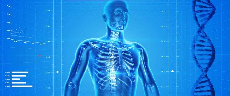 könyökízület osteoporosis kezelése)