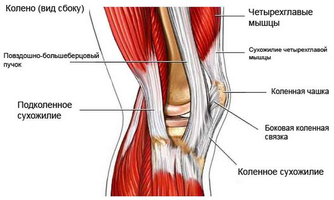 térdízület osteochondrosis fáj a láb talpa