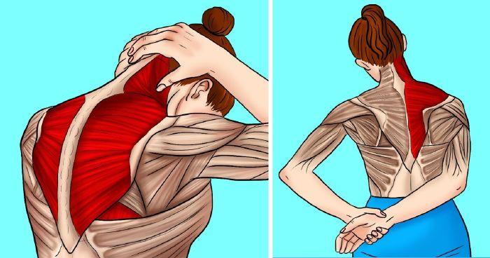 nyak váll fájdalom