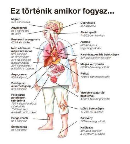 mágus 3 ízületi kezelés)