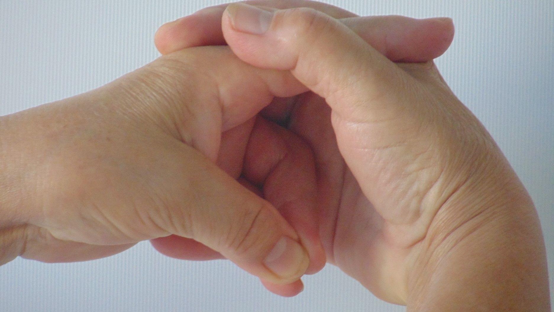 mint az izmok és ízületek fájdalmait kezeli