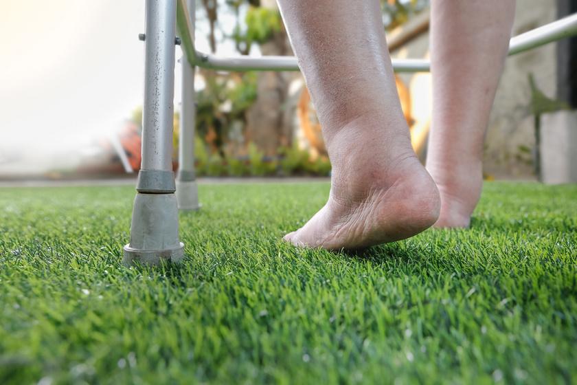 láb boka betegség ízeltlábúak krémére vonatkozó vélemények