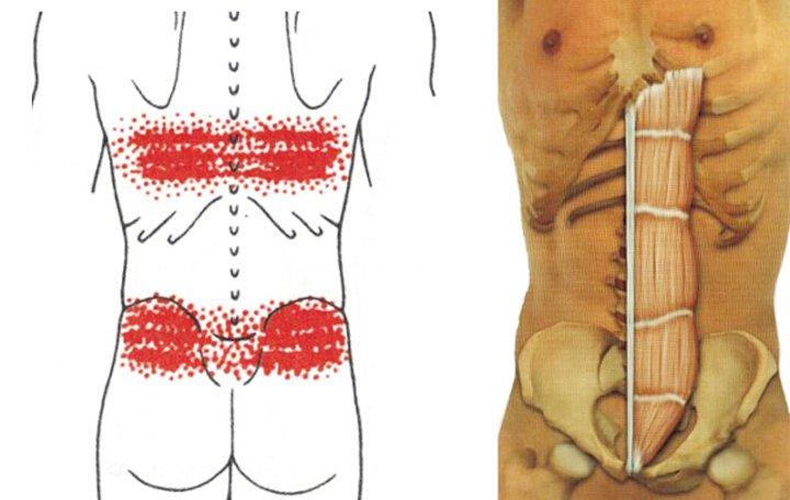 fáj a hát alsó része és az összes ízület)