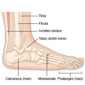 Láb sérülés: tünetek, kezelés, hány gyógyul - Hörghurut