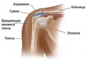 segít-e a teraflex a térd artrózisában)