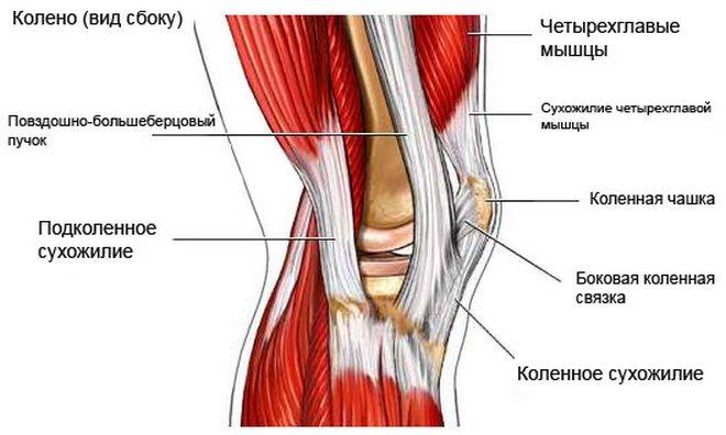 krónikus térd ligamentum károsodás)