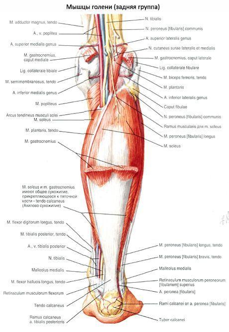 fájó ízület a nagy lábujj falának)
