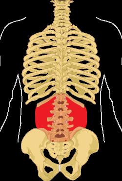 fájó ízületek megrontja a gerincét
