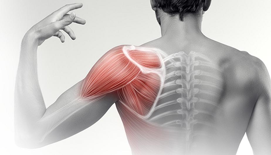 időskorúak csípőízületi gyulladása hogyan nyilvánul meg a csípő artrózisa