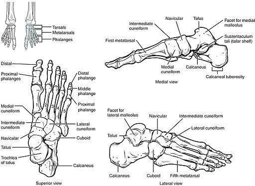 a láb ízületei fájdalmas kezelést)